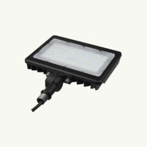 50w 100w ground floodlight